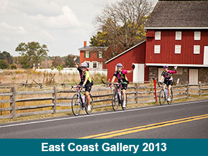 East Coast Gallery 2013