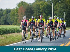 East Coast Gallery 2014